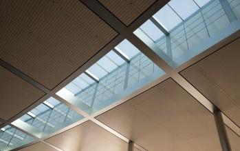 59 claraboyas aportarán luz natural al Campus 2. Apple siempre cuida este detalle tanto en sus oficinas como en sus tiendas alrededor del mundo.